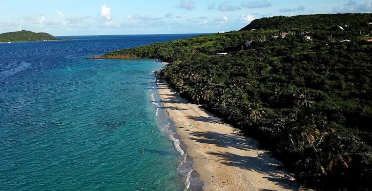 Pemandangan burung Pantai Zoni
